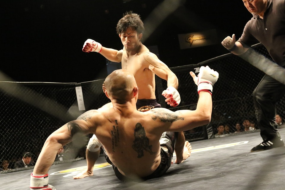 mixed martial arts in stafffighters